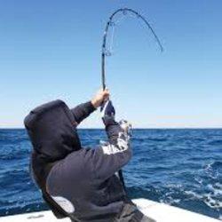 Horgászbot választás anyag és méret alapján
